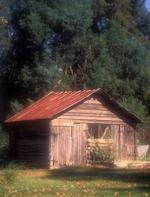 Chicken Coop in Virginia