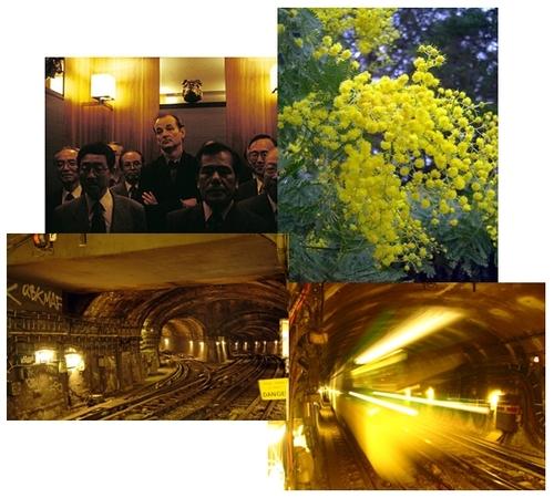 Kern's Metro Collage